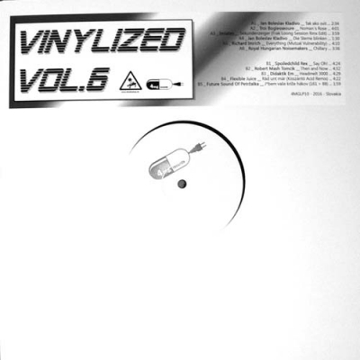 COMPILATIONVinylized Vol.6