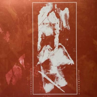 Untitled split LP